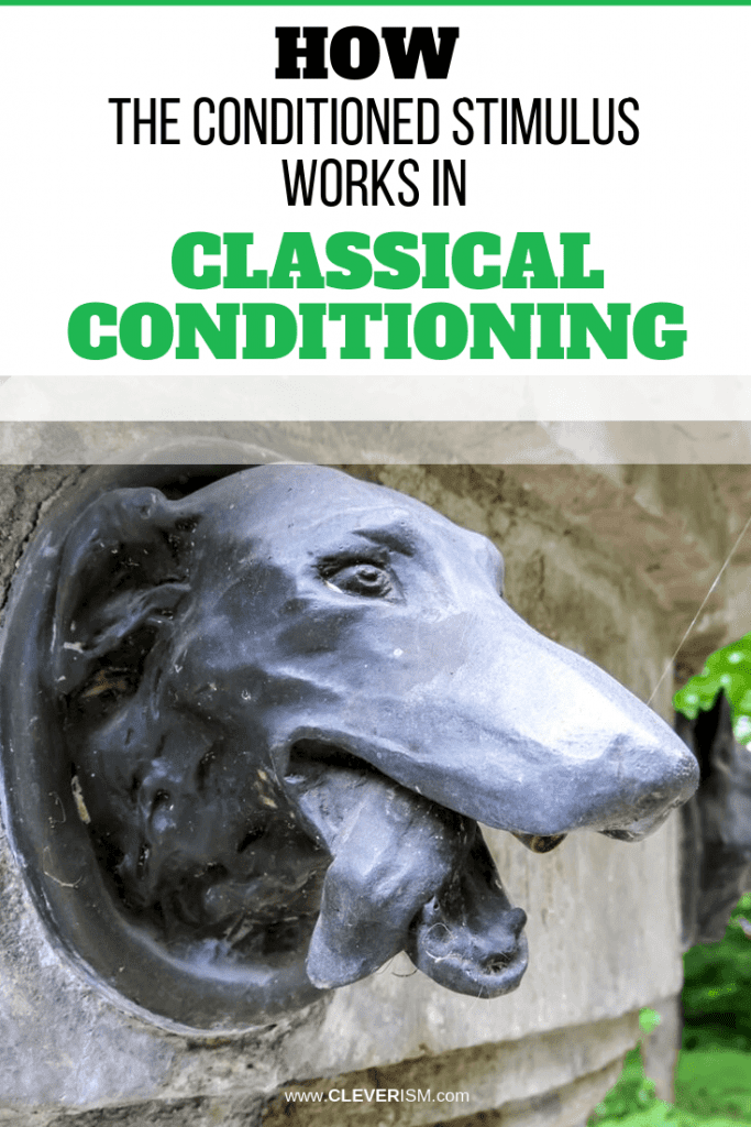 How the Conditioned Stimulus Works in Classical Conditioning