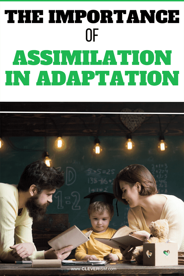 The Importance of Assimilation in Adaptation