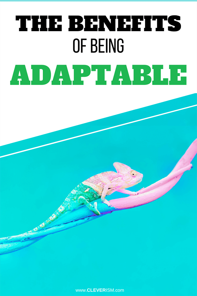 The Benefits of Being Adaptable